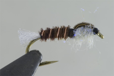 Pearly Pheasant Tail.