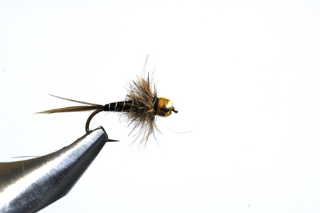 March Brown Nymph.